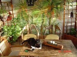 Resultado de imagen de decoracion de terrazas con plantas y flores
