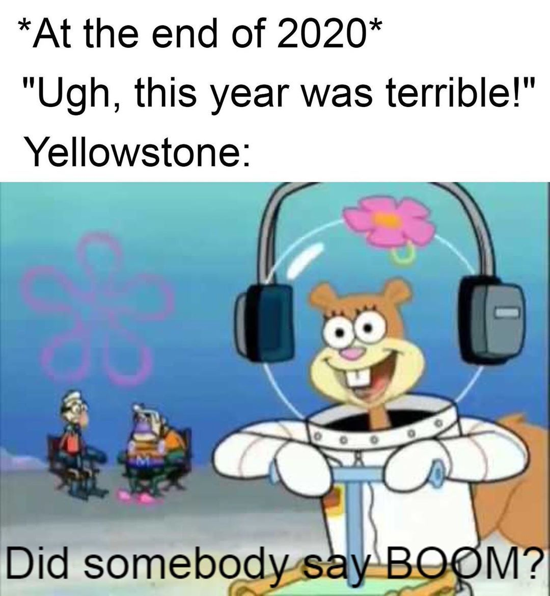 That Would Top Off 2020 For Sure As The Worst Year Ever Funny Relatable Memes Funny Memes Love Memes