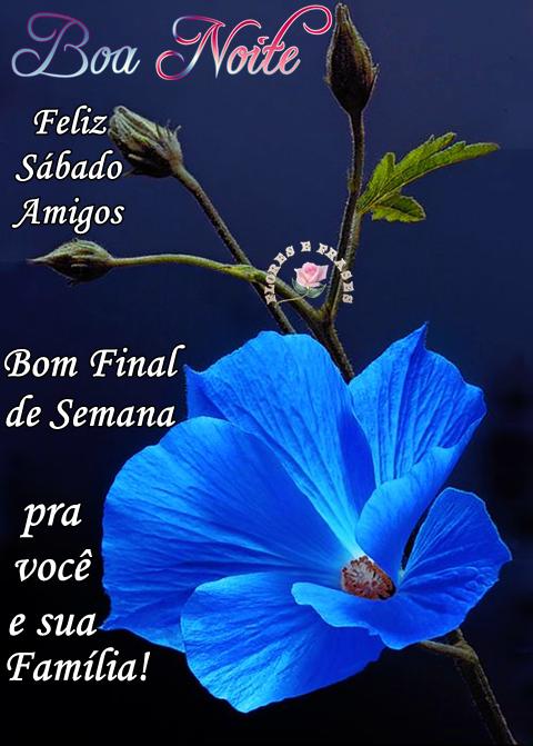 Flores E Frases Boa Noite Feliz Sábado Boa Noite Good Night
