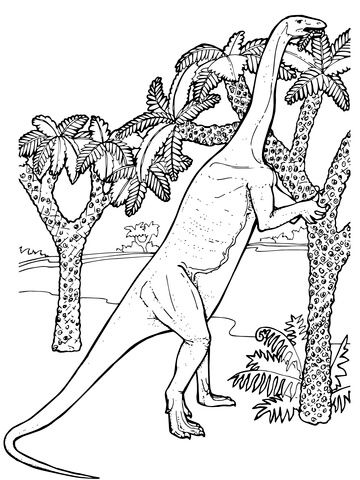 Massospondylus Prosauropod Jurassic Dinosaur Coloring Page From Saurischian Dinosaurs Category Select 26690 Printable Crafts