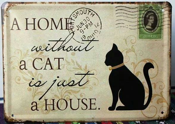 Yo tengo un hogar!