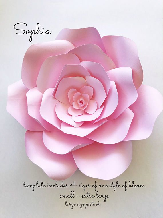 DIY Paper flowers for photo backdrops or home decor, Paper flower ...