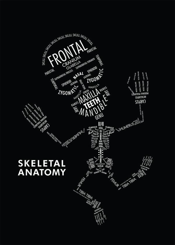 Divertido esqueleto de Amy Kwan para aprender anatomía ...