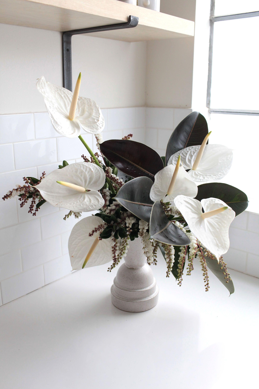 Anthuriums Rethinking A Hotel Lobby Flower Gardenista Hotel Flowers Corporate Flowers Anthurium Flower