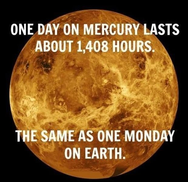 Funny Pictures Of The Day 51 Pics Funny Monday Pictures Monday Humor Science Teacher Humor