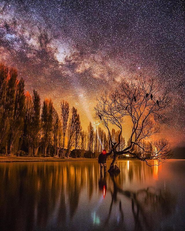The lone tree, Wanaka, New Zealand | Photo by @mack_photography_nz