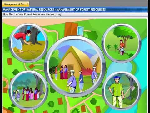 Cbse Class 10 Science Management Of Natural Resources 1 Natural Resource Management Maths Solutions Ways Of Learning
