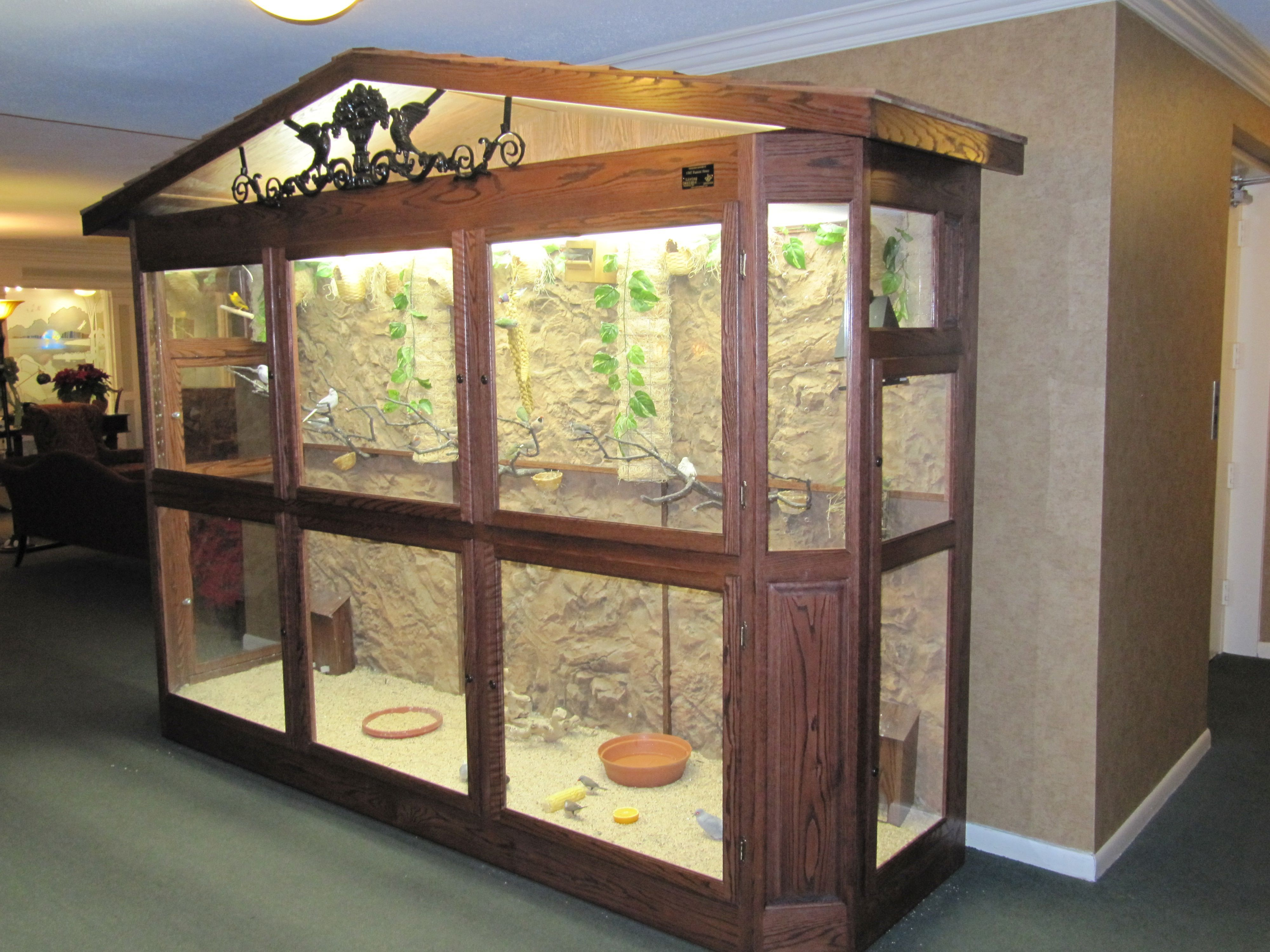 diy bird aviary Diy bird cage, Large bird cages, Bird aviary