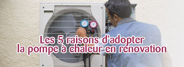 blog Les 5 raisons du0027adopter la pompe à chaleur en rénovation - pompe a chaleur pour maison