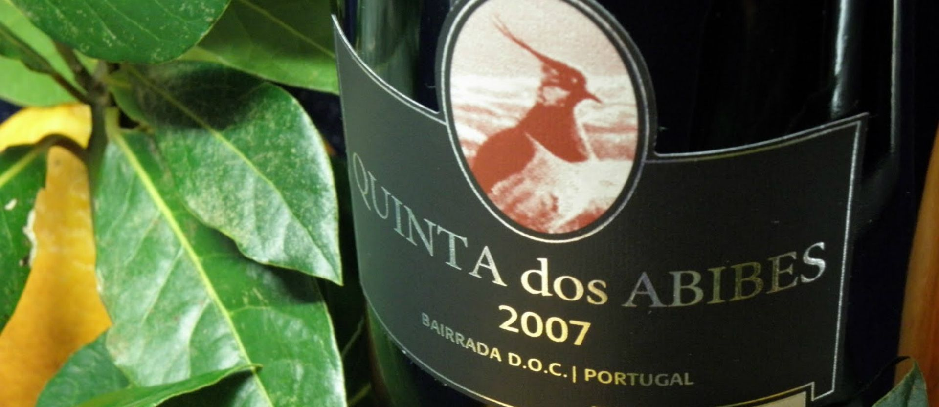 With an intense garnet color and abundant violet tones, Quinta dos Abibes Sublime Red 2010 has a nuance of floral notes, dried black plums, raisins and macerated forest fruits  #wine #wines #winesofPortugal #portuguesewines #gastronomy #QuintadosAbibes