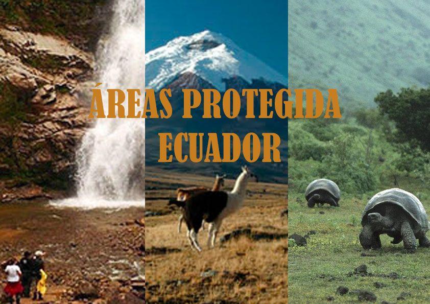 Aqui Podremos Ver El Listado De Las áreas Protegidas Existentes En Ecuador Ecuador Areas Protegidas Turismo