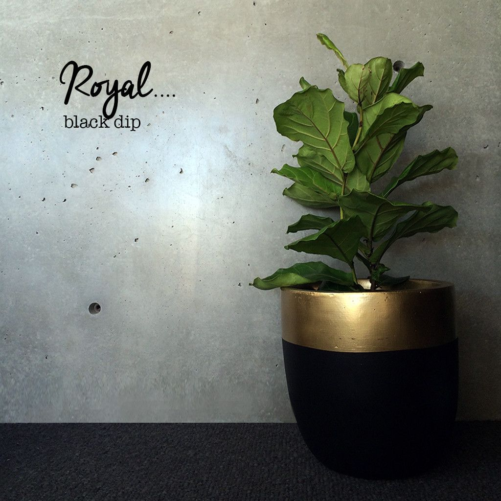 astonishing cement flower pots. Awesome light pot for indoor or undercover outdoor  Planters