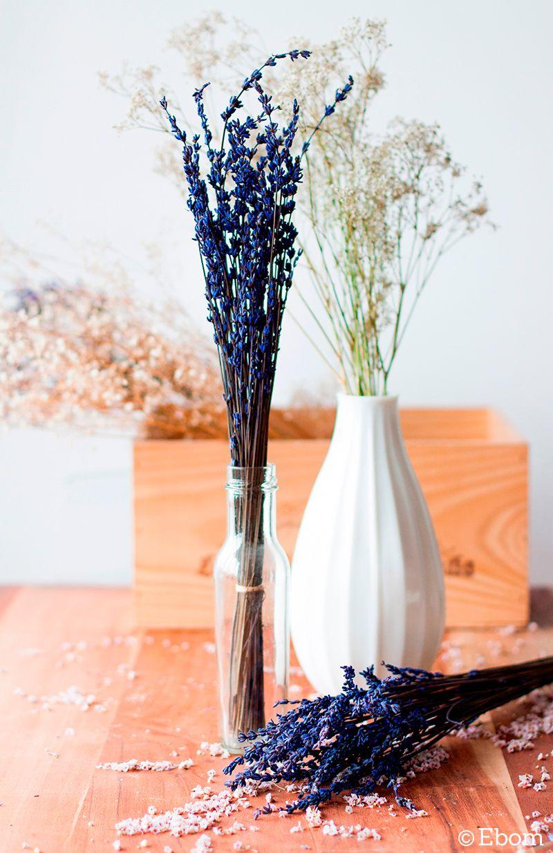 Decorar Con Flores Secas Plants - Decorar-con-flores-secas
