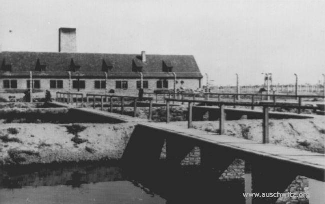 Pin On Auschwitz Birkenau