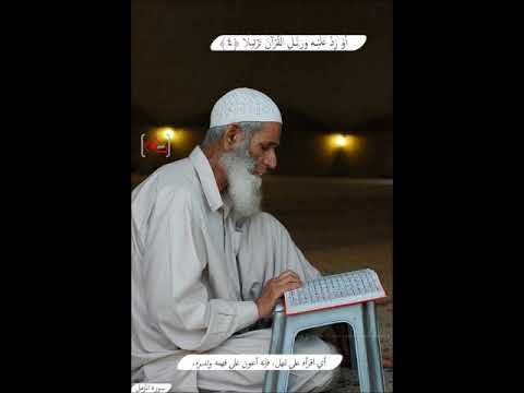 سورة المزمل عبدالودود حنيف سلسلة القران الكريم كامل Quran Top Videos Youtube Videos Youtube