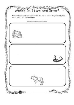 where do i live animal habitats worksheet invites learners to identify and illustrate the. Black Bedroom Furniture Sets. Home Design Ideas