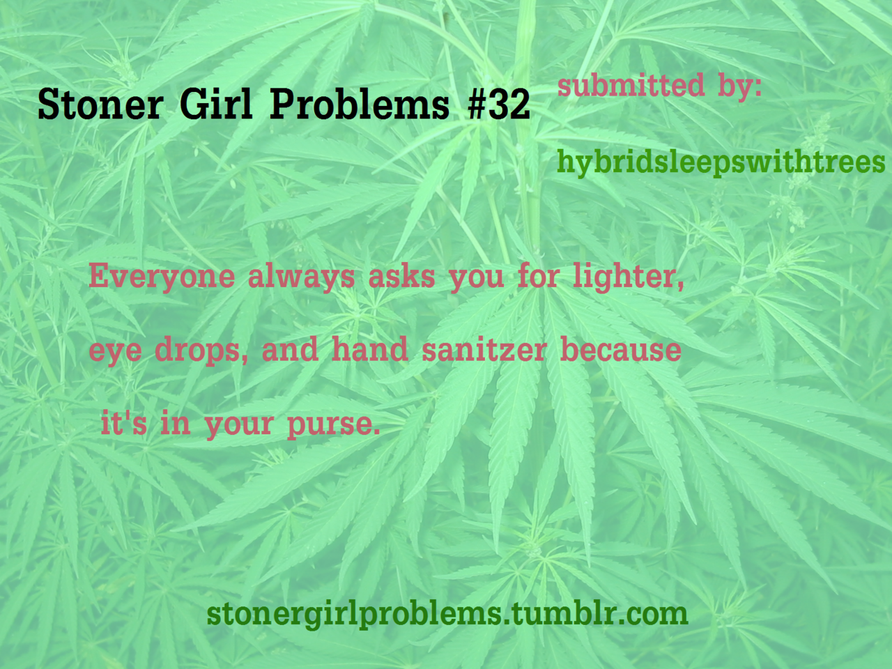 Dating a pothead problems