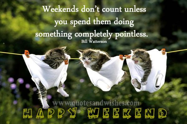 Happy Saturday Quotes And Pictures Funny Happy Weekend