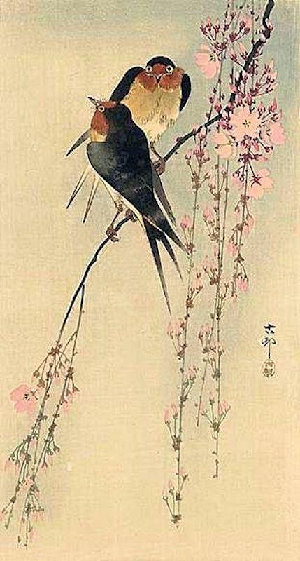 Estampe Japonaise Deux Oiseaux Sur Une Branche Peintures