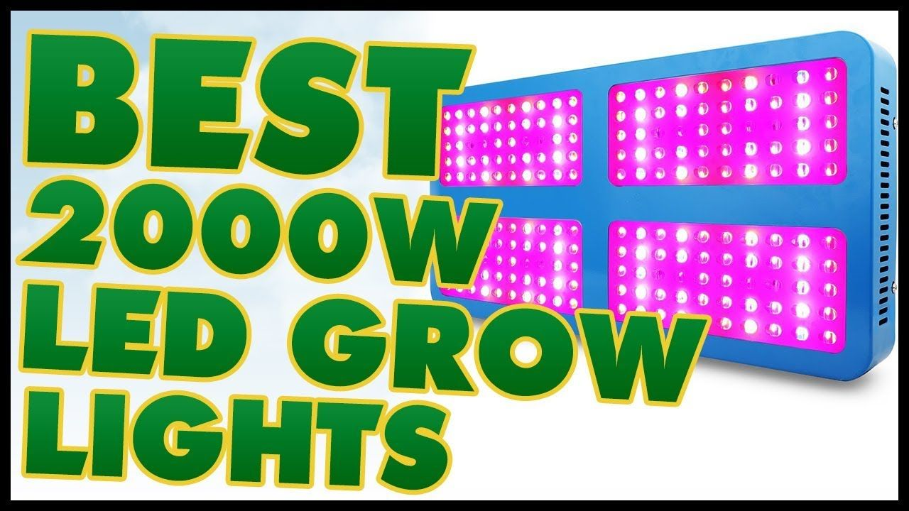 10 best 2000w led grow lights review