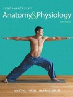 Fundamentals of anatomy physiology 10th edition free ebook fundamentals of anatomy physiology 10th edition free ebook online fandeluxe Image collections