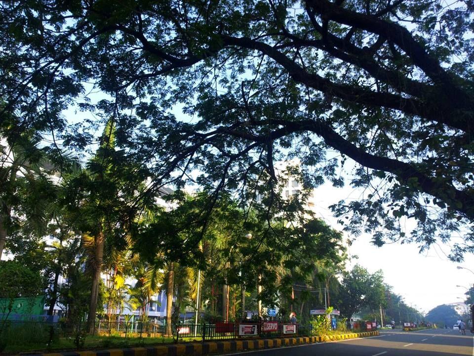 Panampilly Nagar, Cochin, #India