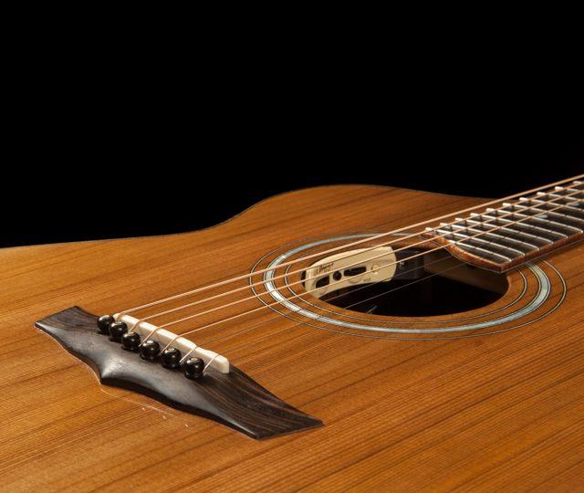 Lichty Custom Acoustic Guitar Wenge Alchemist G79 Custom Acoustic Guitars Acoustic Guitar Guitar