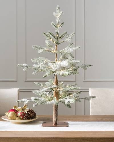 Alpine Balsam Fir Tabletop Tree