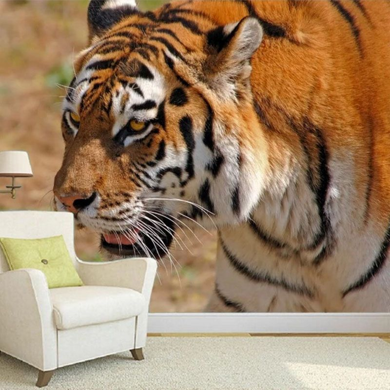 Pin by Custom Wallpapers and Murals on Animal Series