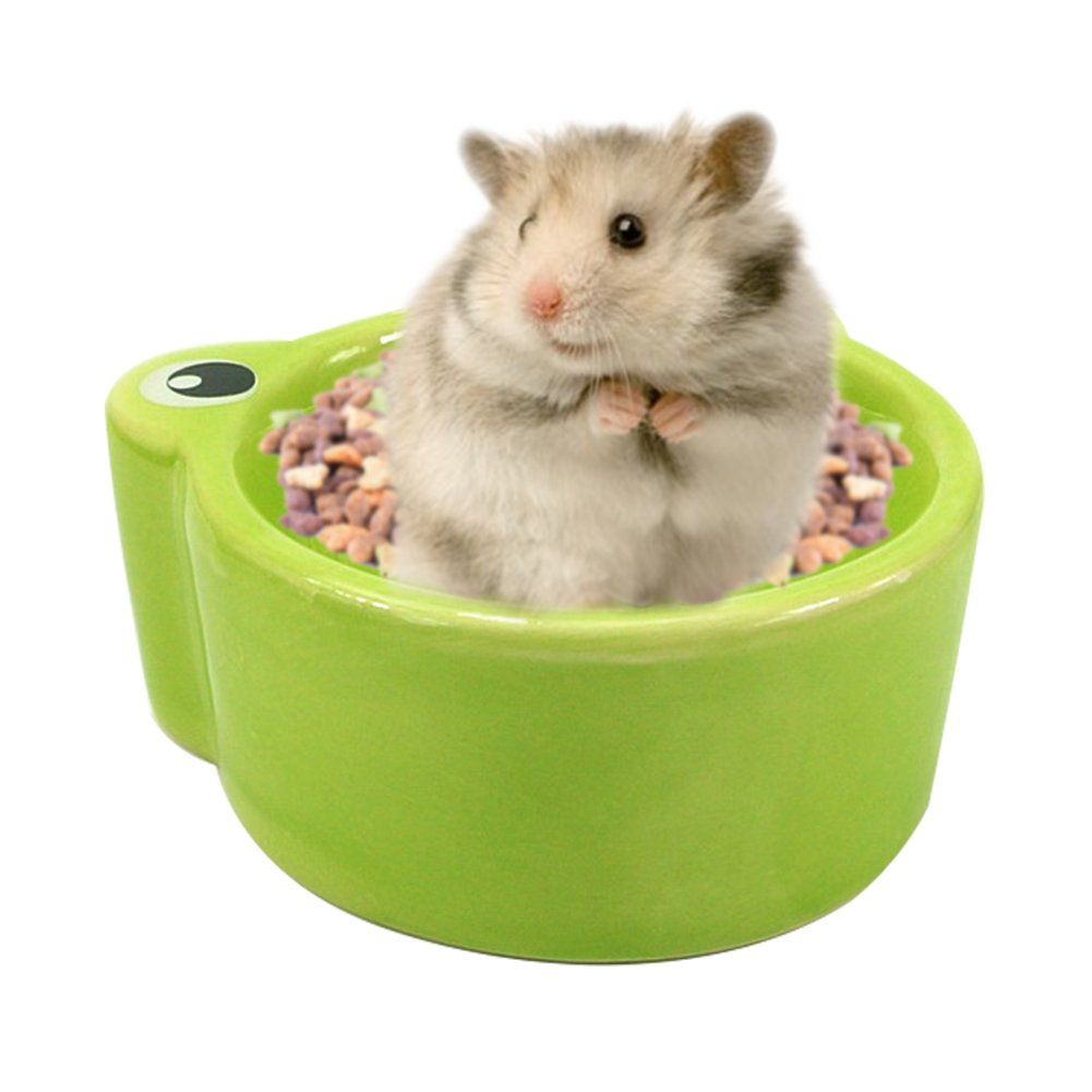 Pin on Small Animal Feeding & Watering Supplies