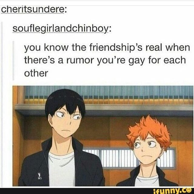 Souflegirlandchinbºy: you know the friendship's real when there's a rumor you're gay for each other - iFunny :)
