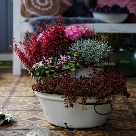 for your balcony and terrace in autumn  BLOOMs  balcony and terrace tips for decorating and planting outdoors Romantic planting ideas for your balcony and terrace in autu...