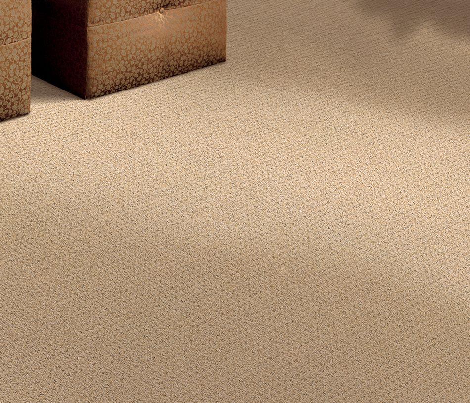Www Stainmaster Com Moda Sisalweave Stainmaster Carpet