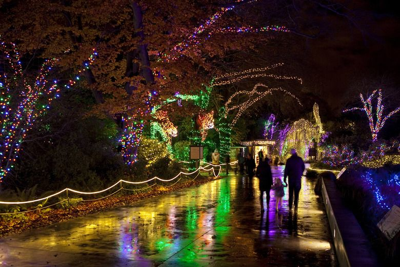 Related Image Woodland Park Zoo Holiday Lights Display Vacation Plan