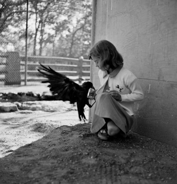 """""""Anon, to sudden silence won, In fancy they pursue The dream-child moving through a land Of wonders wild and new, In friendly chat with bird or beast— And half believe it true."""" — Lewis Carroll, """"All in the Golden Afternoon"""" From Alice's Adventures in Wonderland [Photo by Robert W Kelley, Charlotte, NC, 1935, from the LIFE magazine Photo Archive]"""