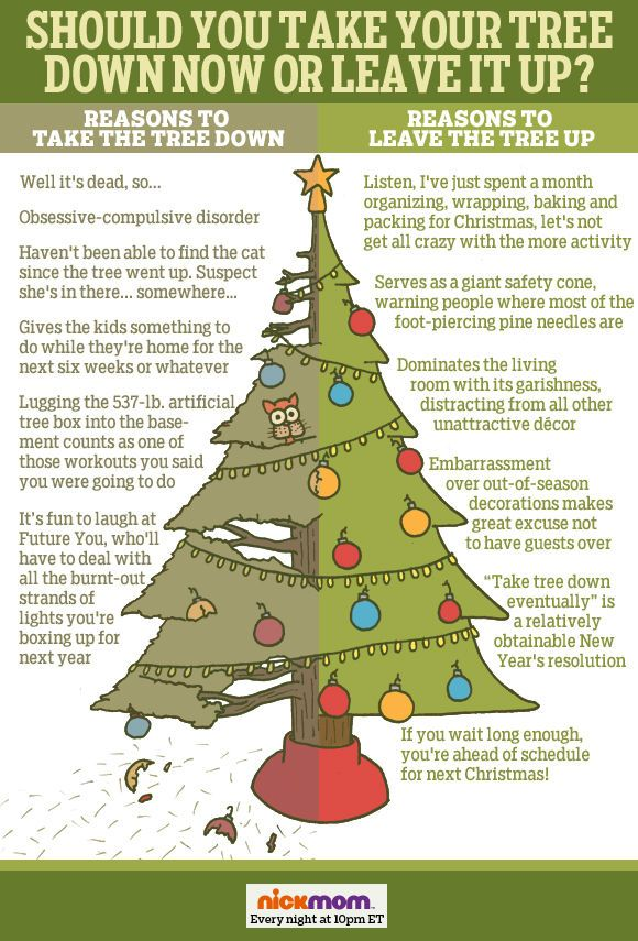 Should You Take Your Tree Down Now or Leave It Up ...