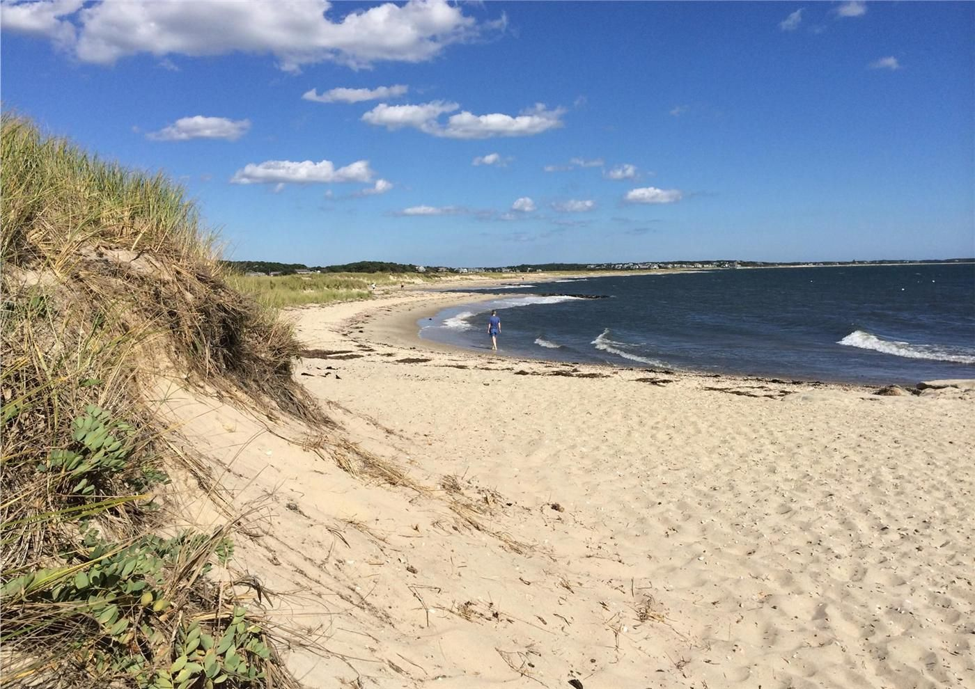 Forest Beach Chatham Cape Cod