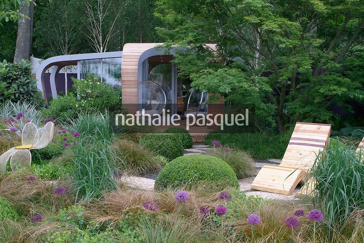 jardin contemporain massif avec allium 39 purple sensation 39 gramin e buxus buis carex comans. Black Bedroom Furniture Sets. Home Design Ideas