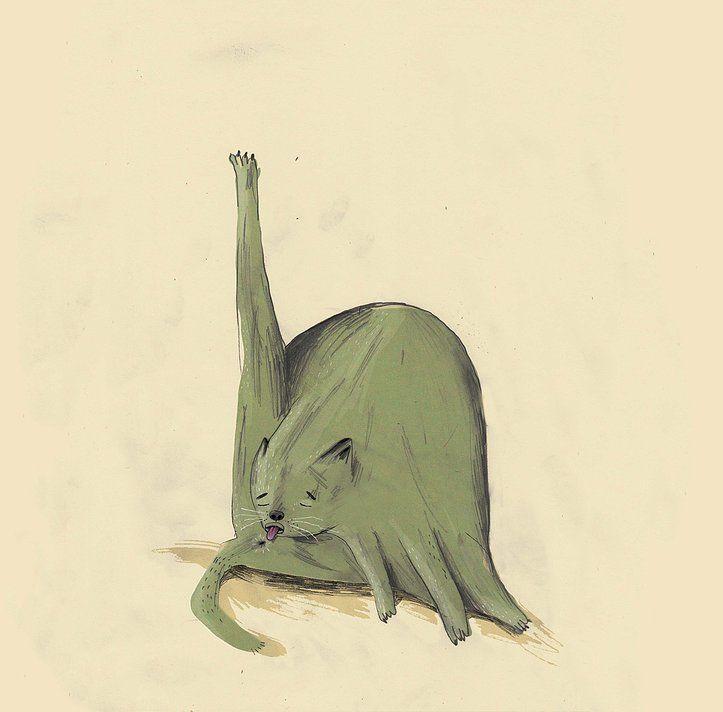 skinkeape | animals