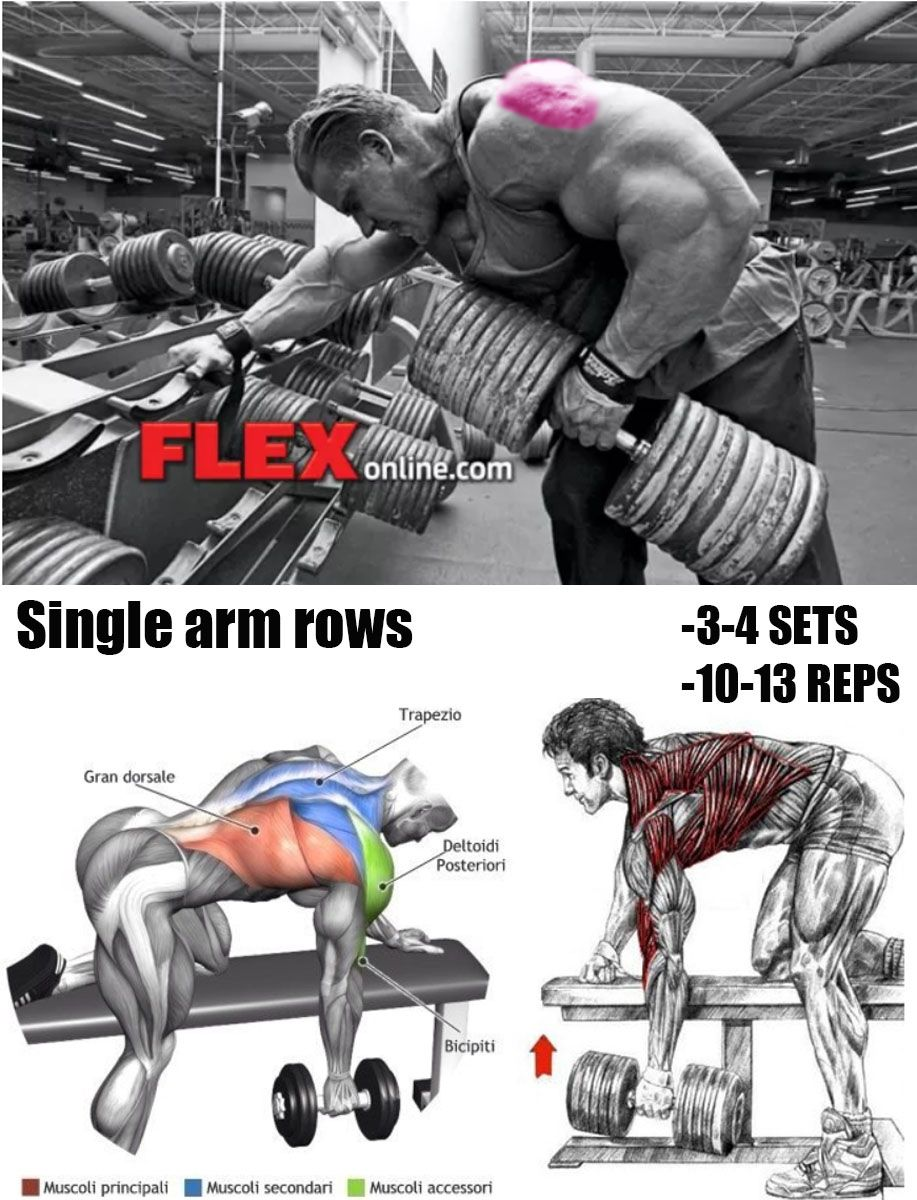 Single arm rows | chest workout | Shoulder workout, Exercise