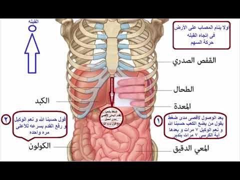 أكبر سر للجن و الشياطين فى جسد الإنسان على الإطلاق هل تعرفوه Islam