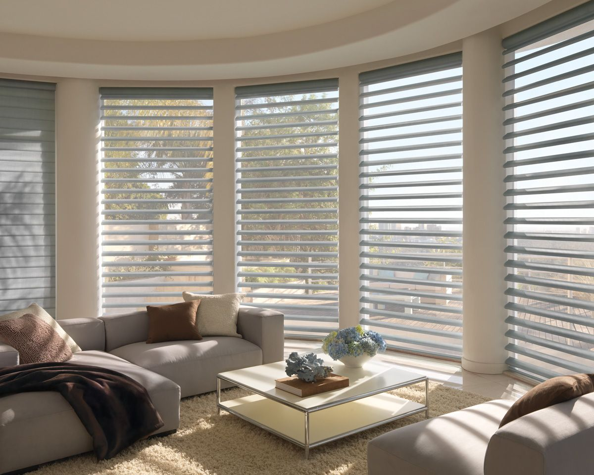Have A Super Sunny Location Hunter Douglas Pirouette Powerrise Gives You Infinite Levels Of Shading A Living Room Shades Window Styles Modern Window Blind