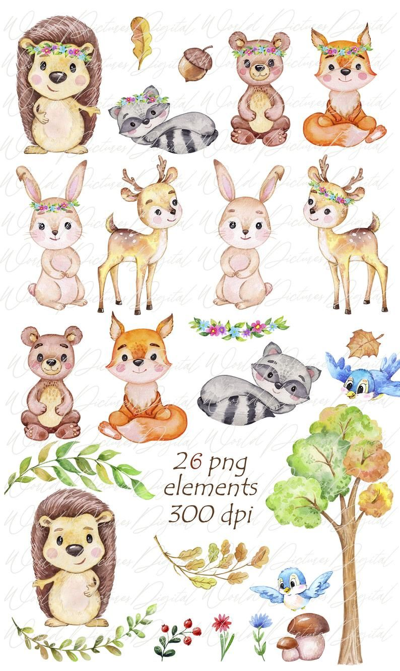 Woodland Animals Watercolor Clipart Forest Animal Etsy In 2021 Forest Animals Illustration Watercolor Animals Watercolor Clipart