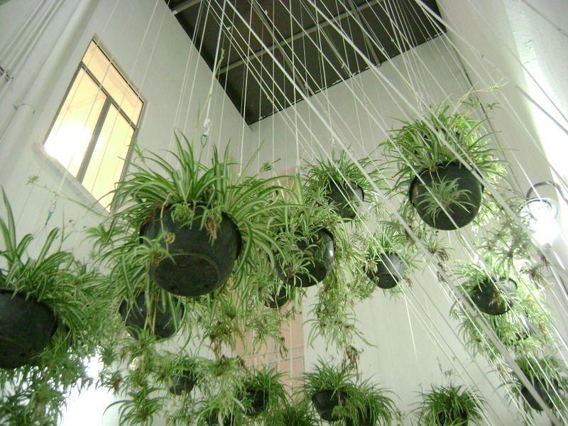 Artist Jeronimo Hagerman (Mexico City) - Installation at Casa Vecina cultural space.