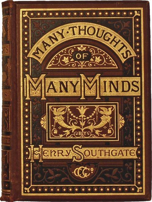 Blue Mind Book