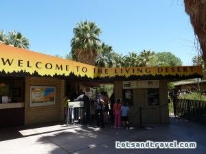 c42b633ac6e5838260f9ae767db8317b - The Living Desert Zoo & Botanical Gardens