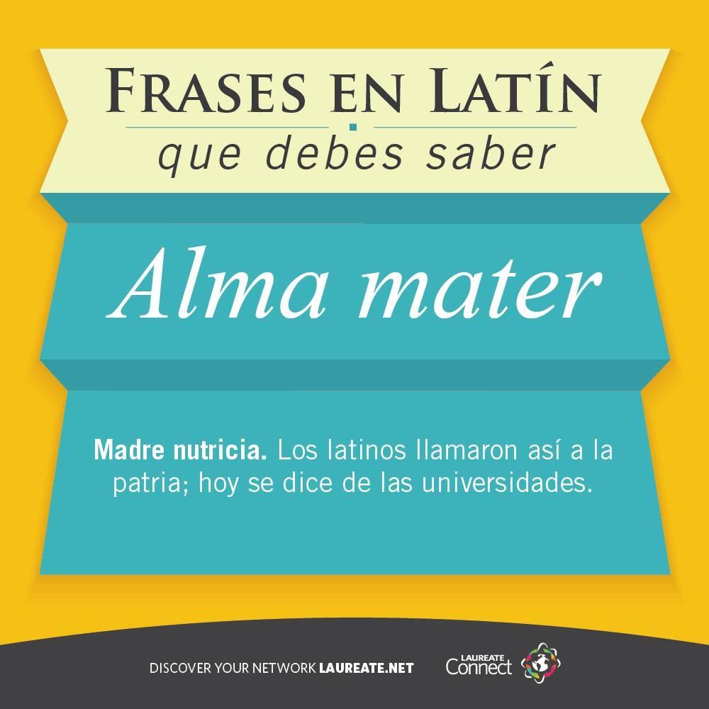 Cuál Es Tu Alma Mater Latín Laureateconnect Idiomas Frases