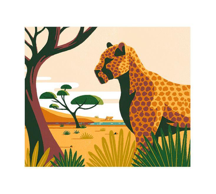 Image result for coffee farm illustration
