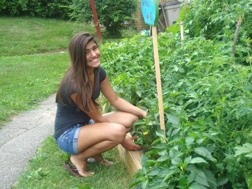 Pin on gardening news