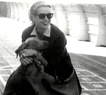 Grace Kelly & her Weimeraner OMG GRACE KELLY HAD A WEIM!?!? @LeeAnne McCracken McCracken McCracken Bell